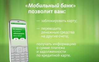 Можно ли подключить мобильный банк через интернет