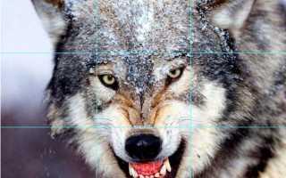 Кадрирование изображения в AutoCAD