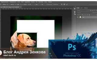 Как уменьшить объект в Фотошопе