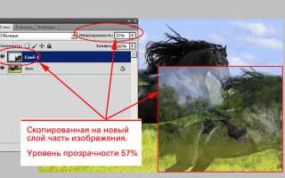 Как сделать картинку полупрозрачной в Фотошопе