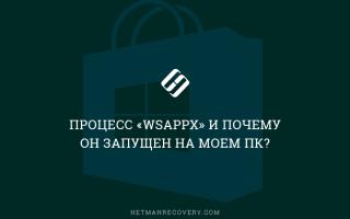 Wsappx что за процесс