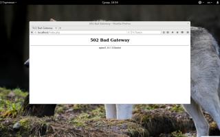 Что означает 502 Bad gateway nginx