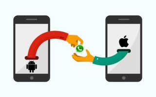 Как зарегистрироваться в WhatsApp c Android-смартфона, iPhone и ПК