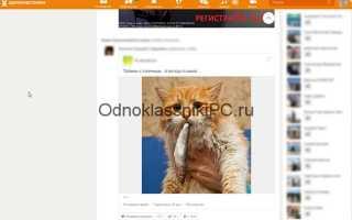 Скачиваем фото с Одноклассников на компьютер